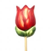 Tulipa Vermelha de Chocolate ao Leite