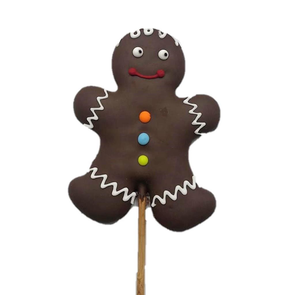 Pirulito de Bolacha de Mel Decorada - Gingerbread Menino