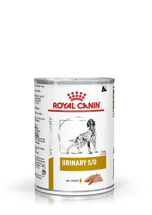 Ração Royal Canin Lata Urinary S/O Wet para Cães
