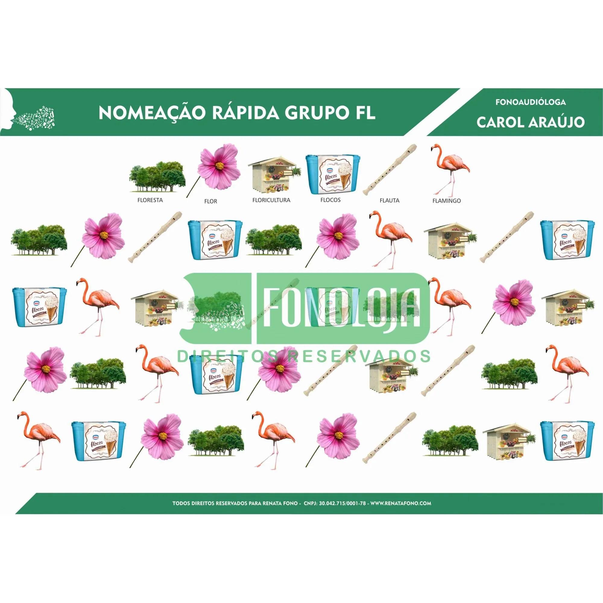 KIT 13 - 05 PRANCHAS NOMEAÇÃO RÁPIDA GRUPOS COM L - cc(l) - FORMATO DIGITAL