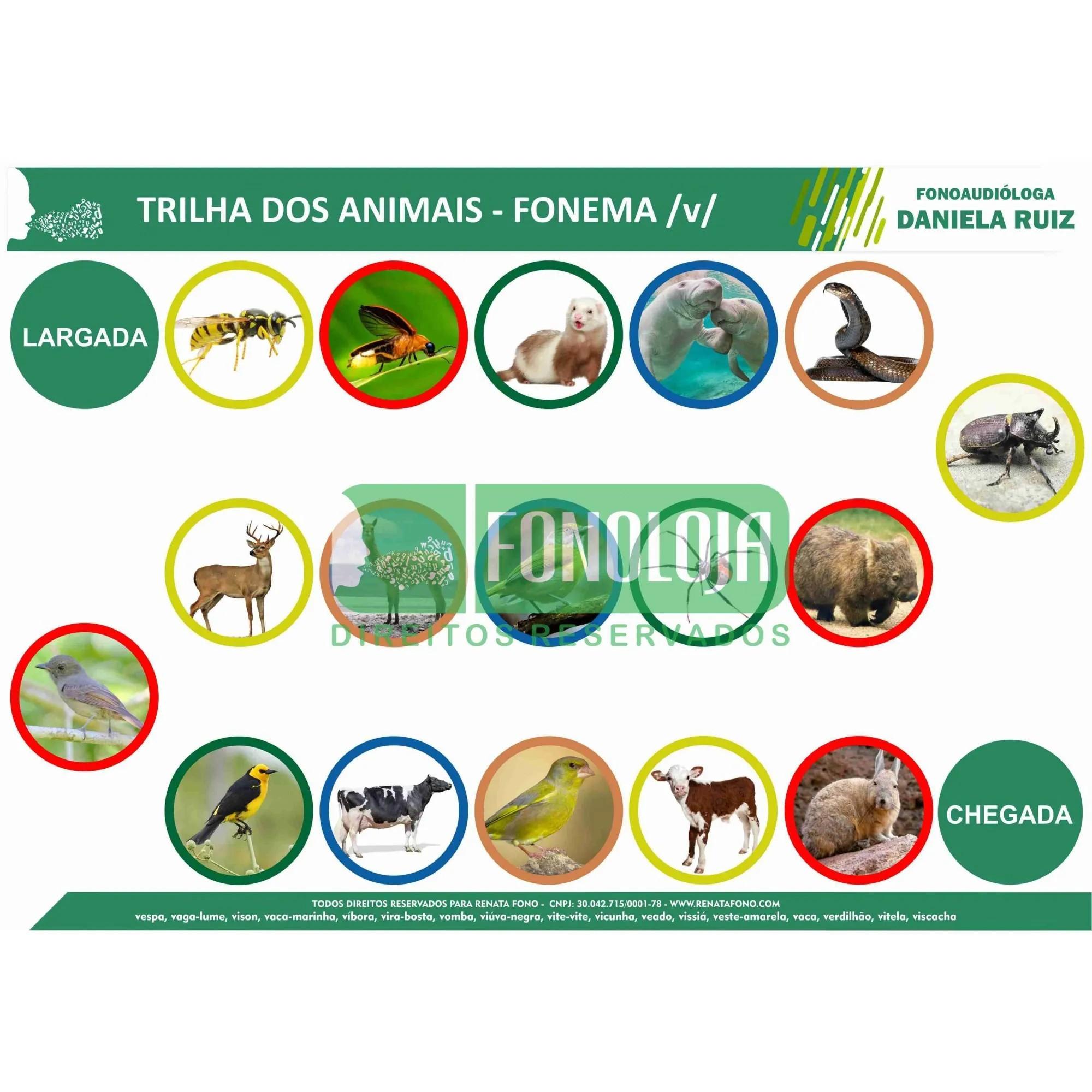 KIT 22 - 06 PRANCHAS JOGOS DE TRILHA FONEMAS FRICATIVOS - FORMATO DIGITAL