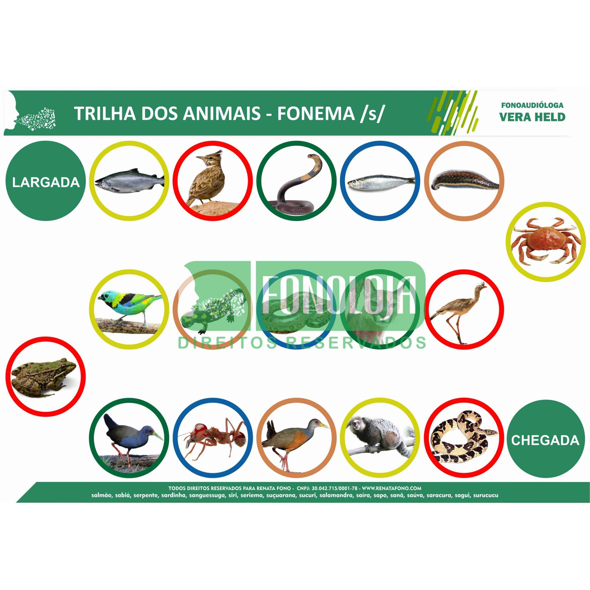 KIT 22 - 06 PRANCHAS JOGOS DE TRILHA FONEMAS FRICATIVOS