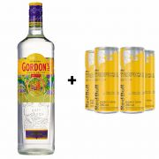 Kit Gin Gordon 750ml + Red Bull Tropical 250ml