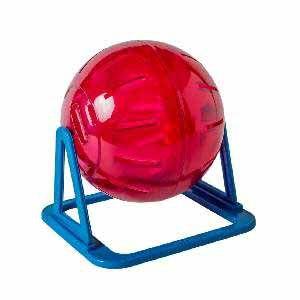 Brinquedo Globo de Acrílico Exercício com Suporte Hamster