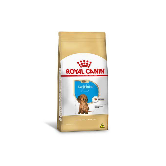 Ração Royal Canin Dachshund Junior