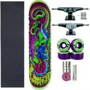 Skate Completo WoodLight Fiberglas