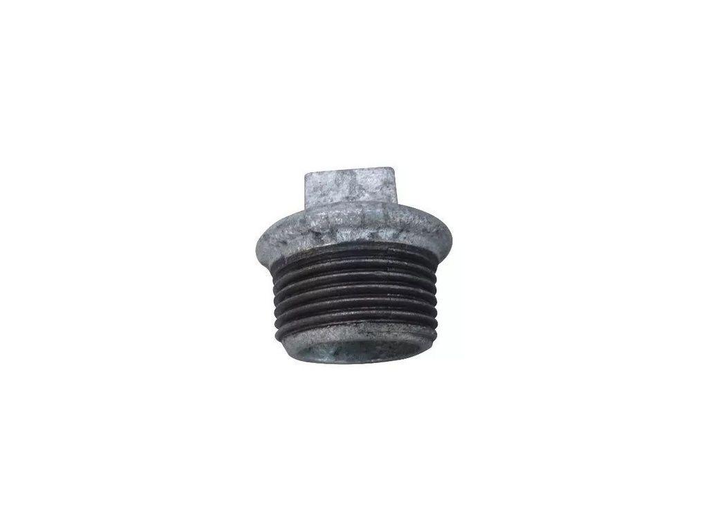 Bujão Galvanizado 1 (tampão, Plug)