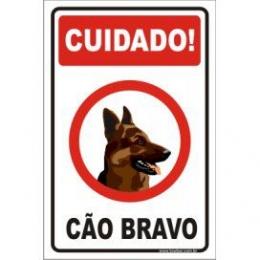Cão bravo