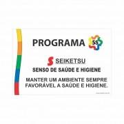 Programa 5S - Seiketsu