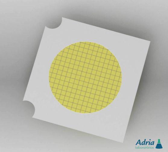 Membrana Filtrante Nitrato De Celulose Branca Quadriculada Estéril Individual 0,80Um- 47mm S/PAD C/100Unidades Unifil
