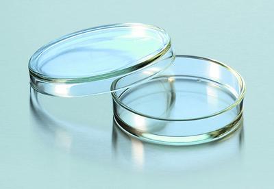 Placa de Petri 150mm x 25mm Vidro Boro 3.3
