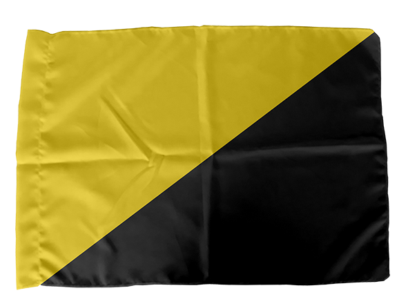 Bandeira Anarcocapitalismo