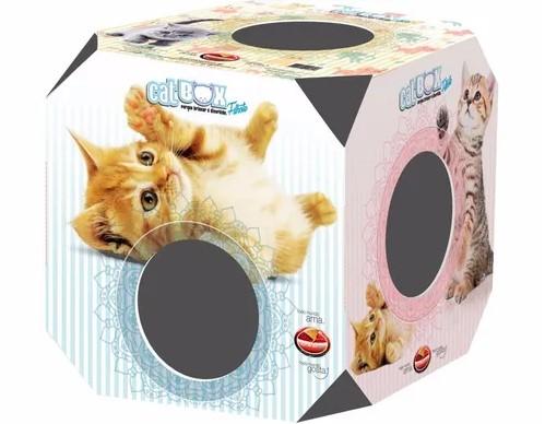 Brinquedo Caixa Cat Box Filhote para Gatos - Furacão Pet