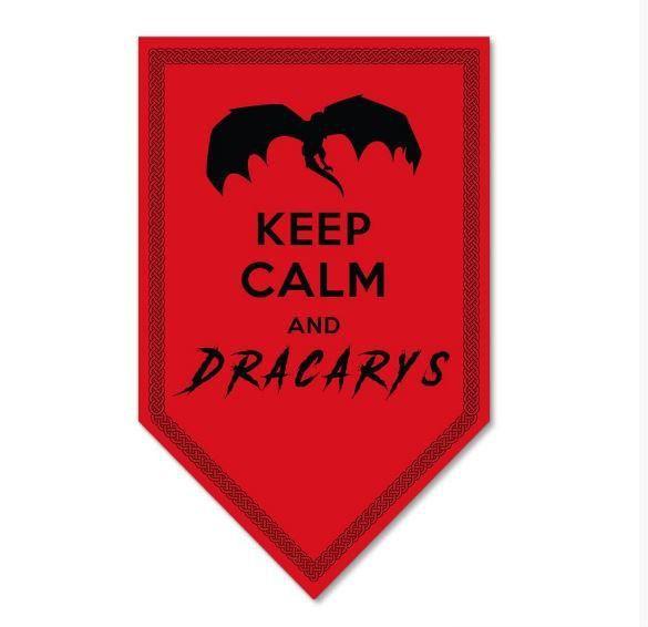 Placa Decorativa Dracarys Game Of Thrones - Beek