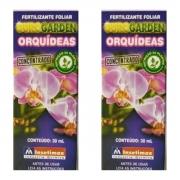 Fertilizante adubo  para orquídeas concentrado  kit com 2 unidades