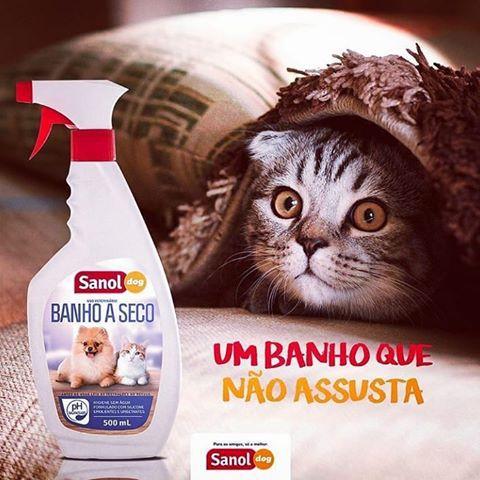 Banho À Seco Sanol Dog Para Cães