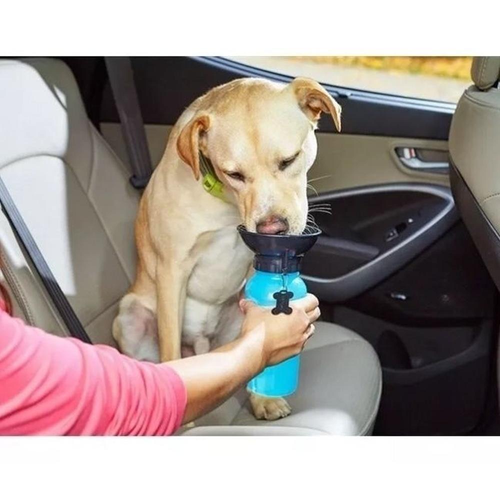 Bebedouro passeio Portatil  Para Cães e gatos
