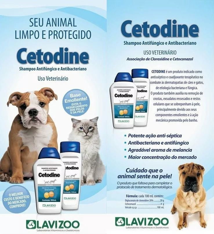 Cetodine Shampoo Antifúngico Dermatológico Clorexidine 2 UNIDADES