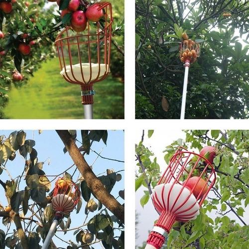 Coletor De Frutas Sem Cabo Tramontina Resistente PRATICO