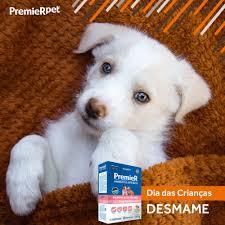 Papinha Desmame Premier Ambientes Internos Cães Filhotes 1 Kg