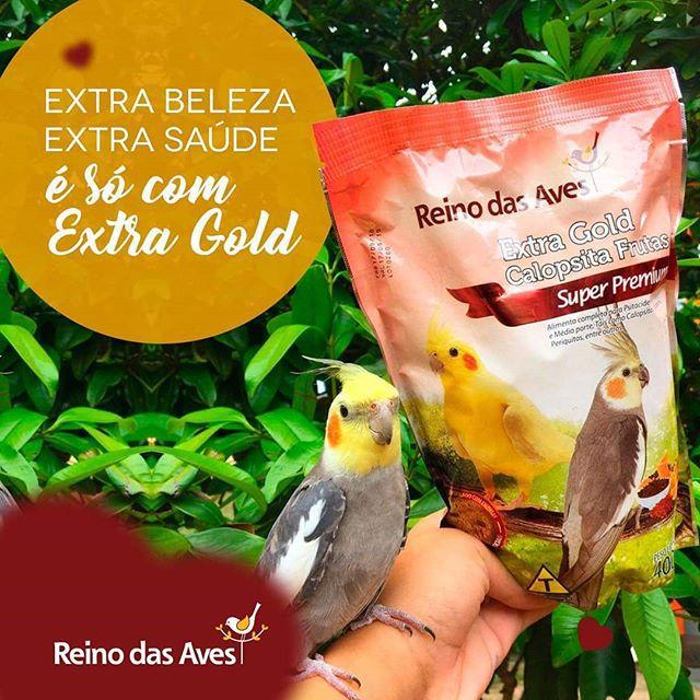 Ração Extra Gold Calopsita Frutas 400gr - Reino Das Aves KIT COM 2