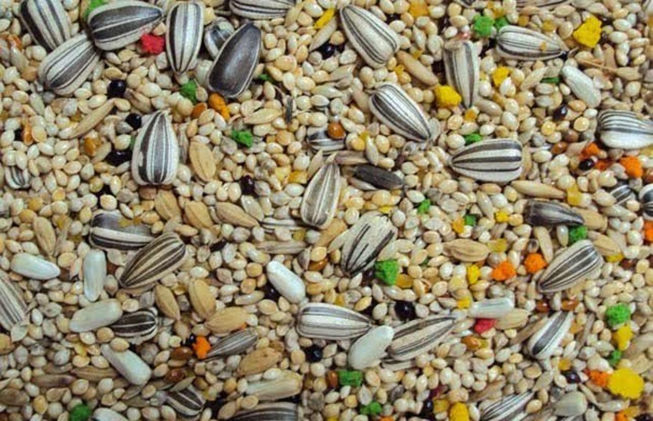 Ração Mix Mistura Para Calopsita 5 kg - Ótima Qualidade