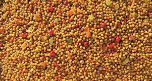 Ração Nutrópica Para Trinca Ferro Sabor Frutas - 300g