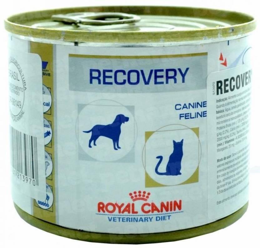Recovery Royal Canin Veterinary Ração Lata Cães E Gatos 195 G - 1 Unidade