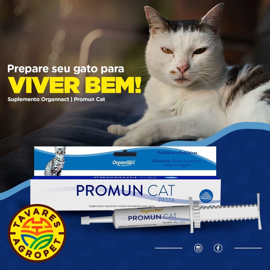 Suplemento Probiótico Promun Cat Para Gatos Pasta 30g