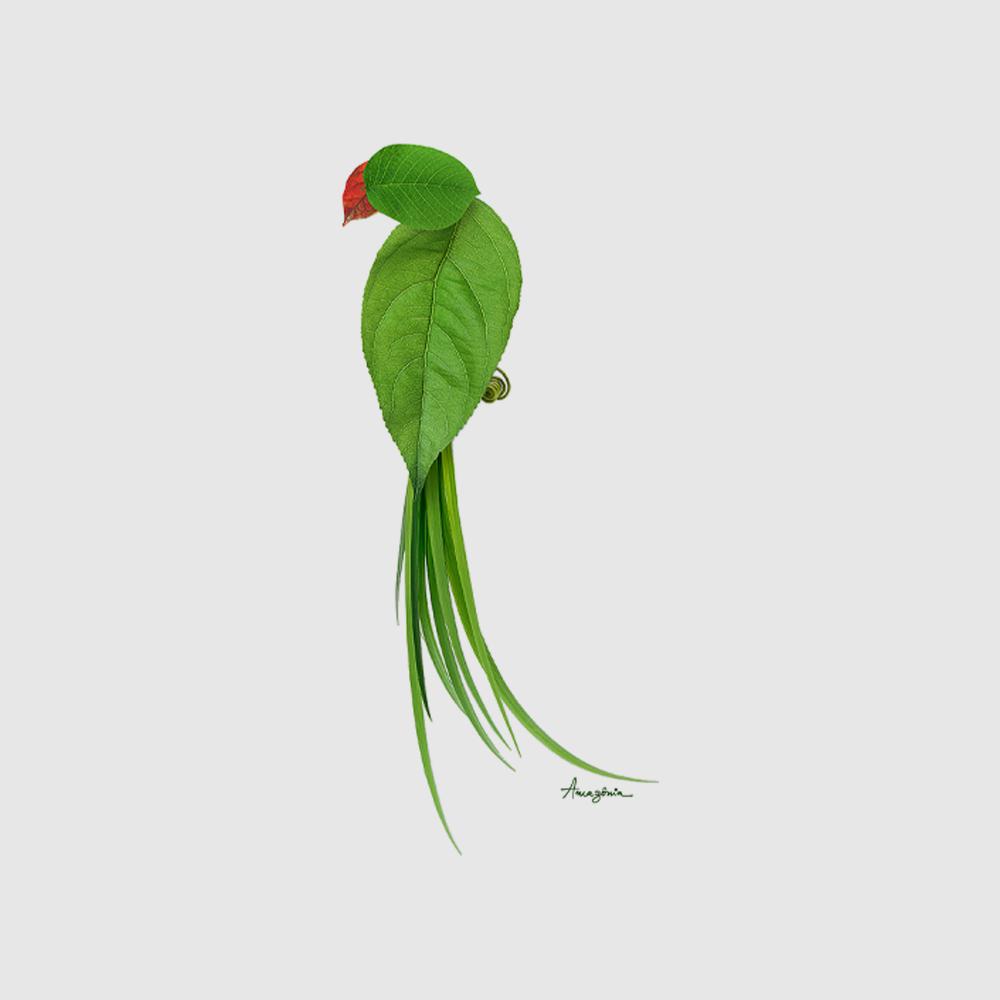 Baby Look Amazônia Leaf Bird - Branco