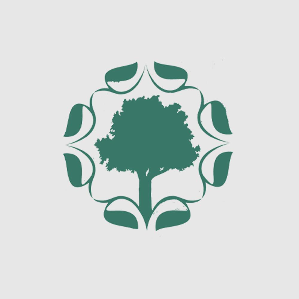 Camiseta Amazônia Logo Indiana - Preto