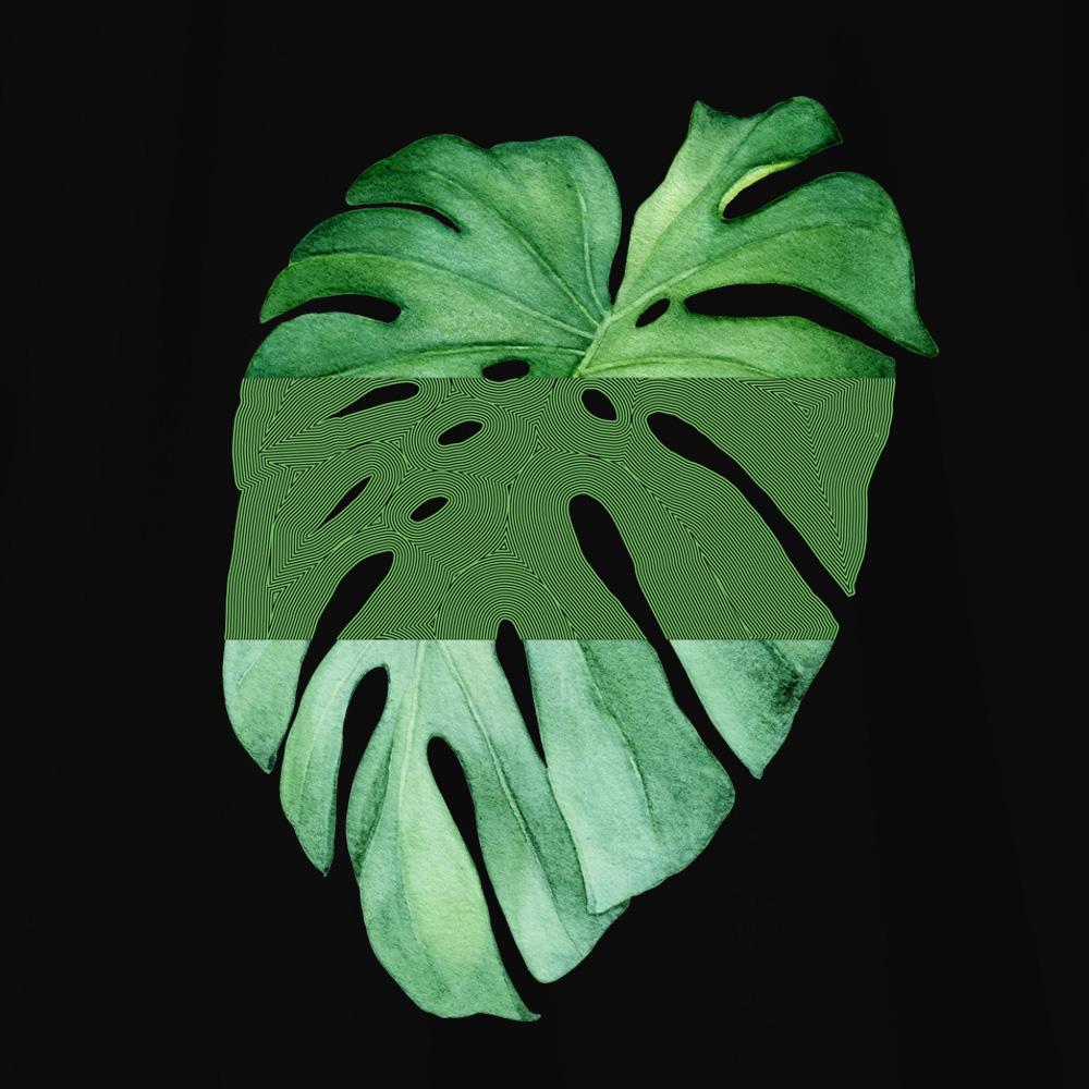 Camiseta Amazônia MONSTERA GRÁFICA - PRETO