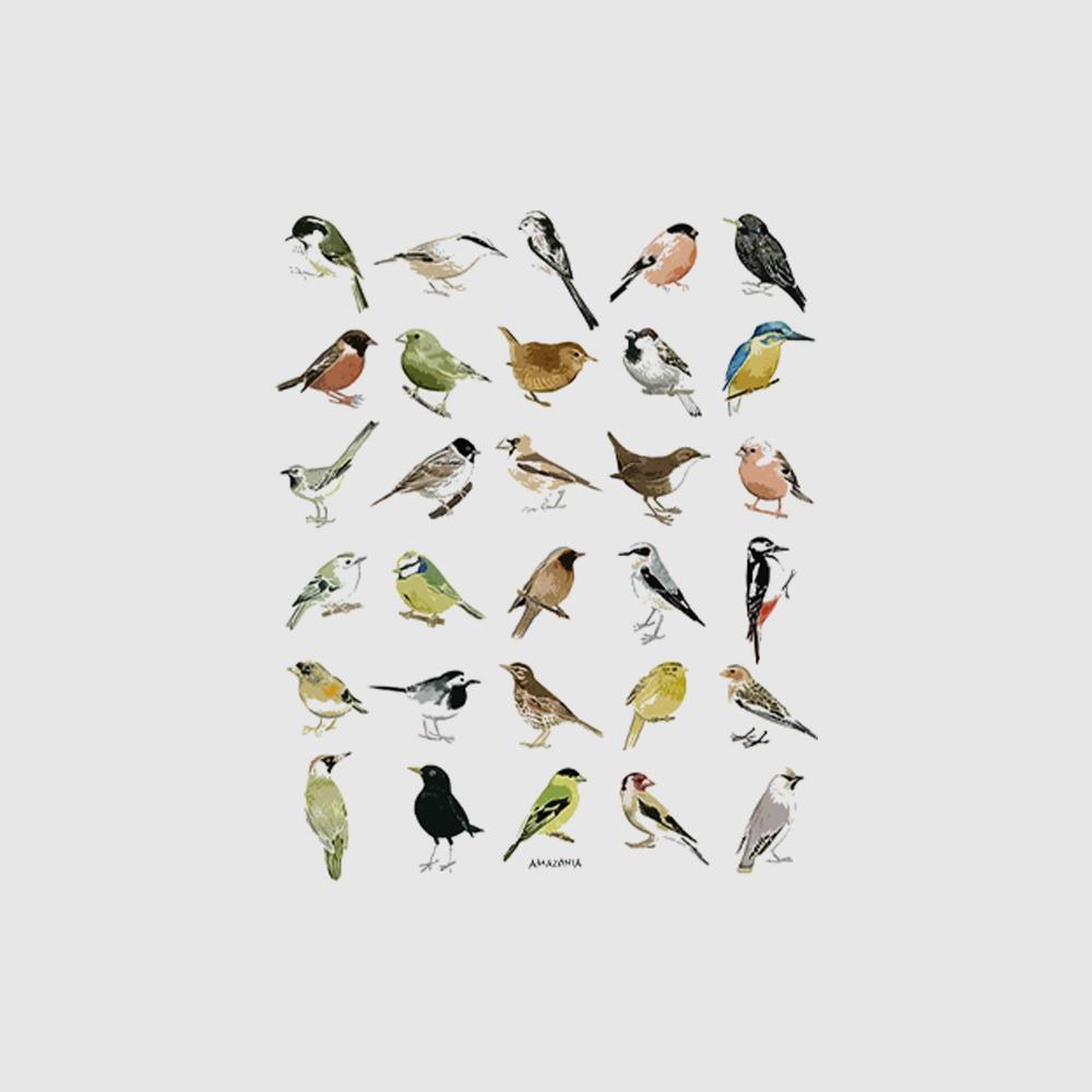 Camiseta Amazônia Ornitologia - Preto