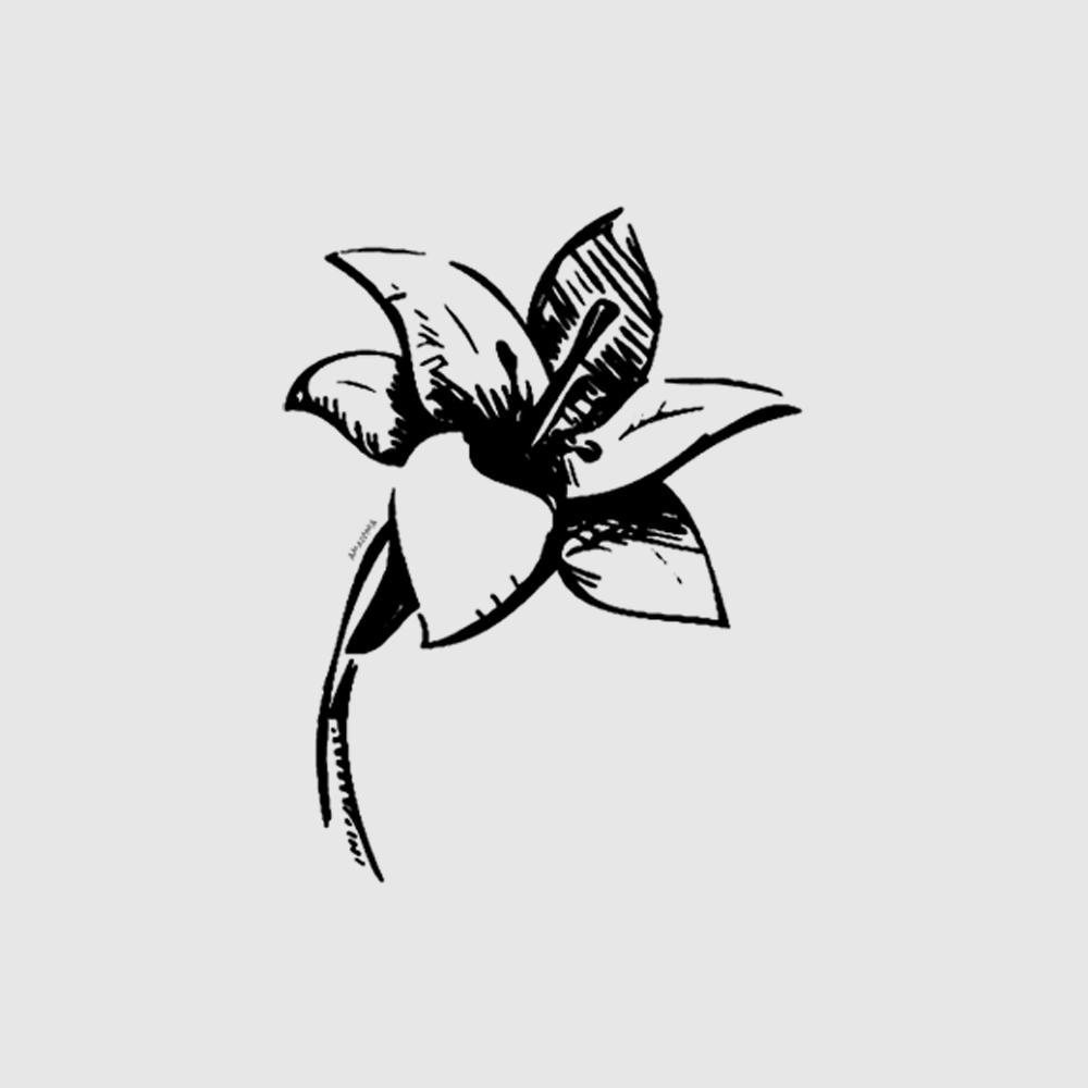 Camiseta Amazônia Simplicidade - Preto