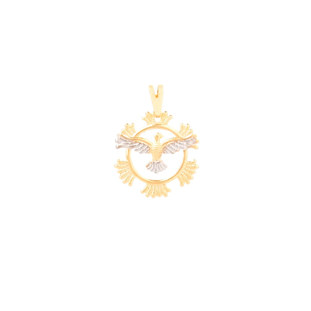 Pingente Fosco Circulo Desenhado Espírito Santo Banhado a Ouro 18k