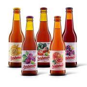 Kit degustação Barbarella Fruitbier 5 cervejas