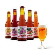 Kit degustação Barbarella Fruitbier 5 cervejas + taça personalizada
