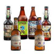 Kit premiadas lupuladas 6 cervejas