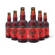 Pack Gram Bier Irish Red Ale Red Dublin 6 cervejas 500ml