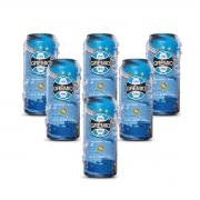 Pack Salva Gremio Pilsen 06 cervejas 473ml