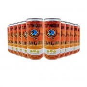 Pack Tupiniquim Enigma Australian Pale Ale 12 cervejas 350ml