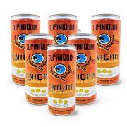 Pack Tupiniquim Enigma Australian Pale Ale 6 cervejas 350ml