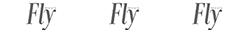 Revista Fly