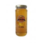 Vidro de mel 450 g - Favo de mel - 01 un