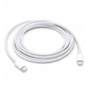 Cabo USB-C MagSafe 2m Original