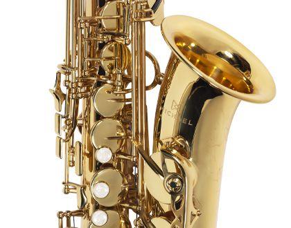 Sax Alto Michael WASM30N
