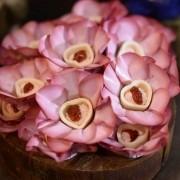 Forminha para Doces Margarida em Papel Especial Rosa Chá Kit 40 Unidades
