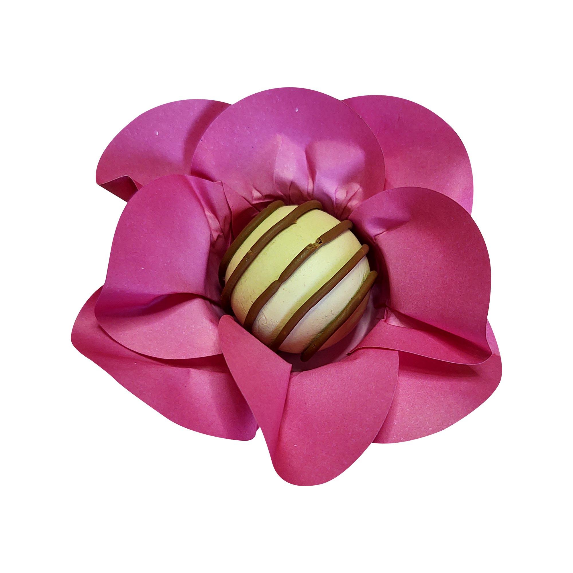 Forminha para Doces Mini Margarida em Papel Especial Pink Kit 40 Unidades
