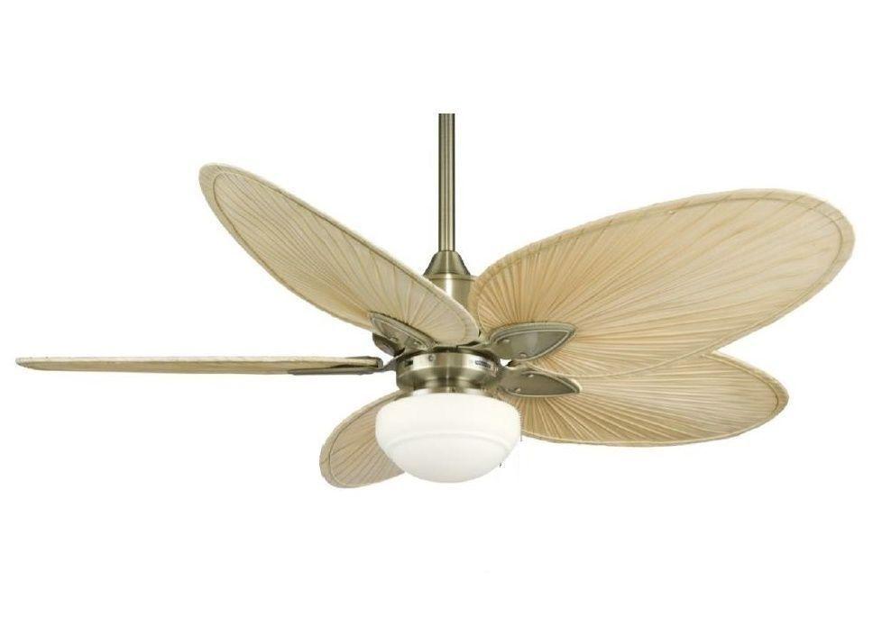 Ventilador Fibra Natural Windpointe Controle Remoto