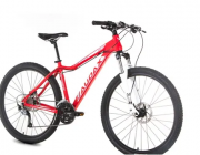 Bicicleta Audax ADX 201 13/27,5